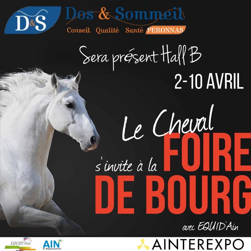 Dos & Sommeil Foire de Bourg en Bresse 2016