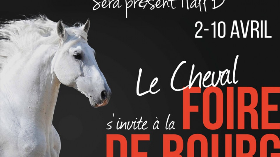 Foire-de-Bourg-2016-Dos-etSommeil